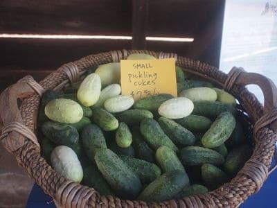 Summer Fun: Visit a Farmers' Market