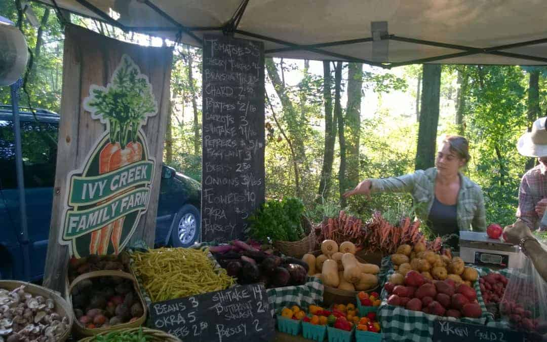 Season Change at the Local Farmers' Market