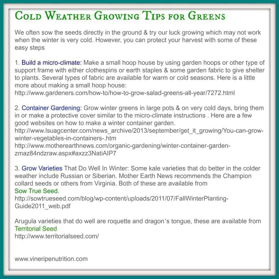Here are some resources and growing tips for growing greens in the cold weather.