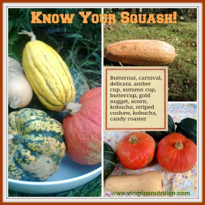 know your squash