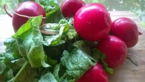 Leaping Radishes & 3 Great Ways to Prepare Them!